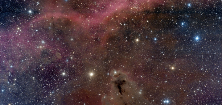 Туманность LDN 1622 и Петля Барнарда. Credit: Leonardo Julio (Astronomia Pampeana)