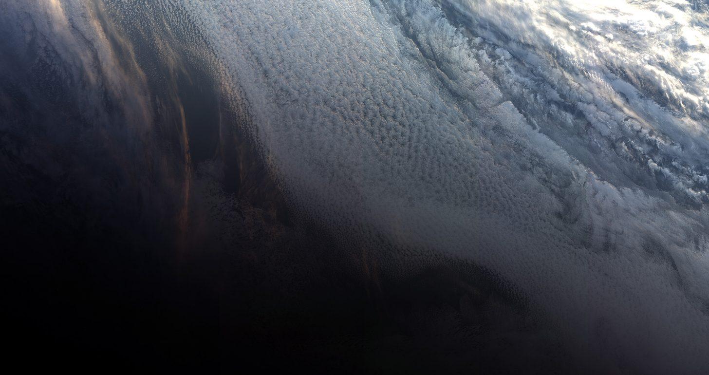 Під льодами Антарктики вчені виявили дивних істот. ФОТО